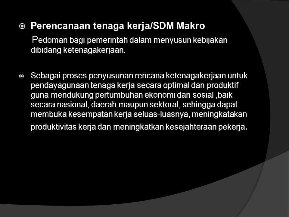 UU Nomor 13 Tahun 2003 Implikasinya Dalam Pengembangan dan Perencanaan SDM Dilakukan dengan cara : a.Perencanaan tenaga kerja/SDM makro b.Perecanaan t