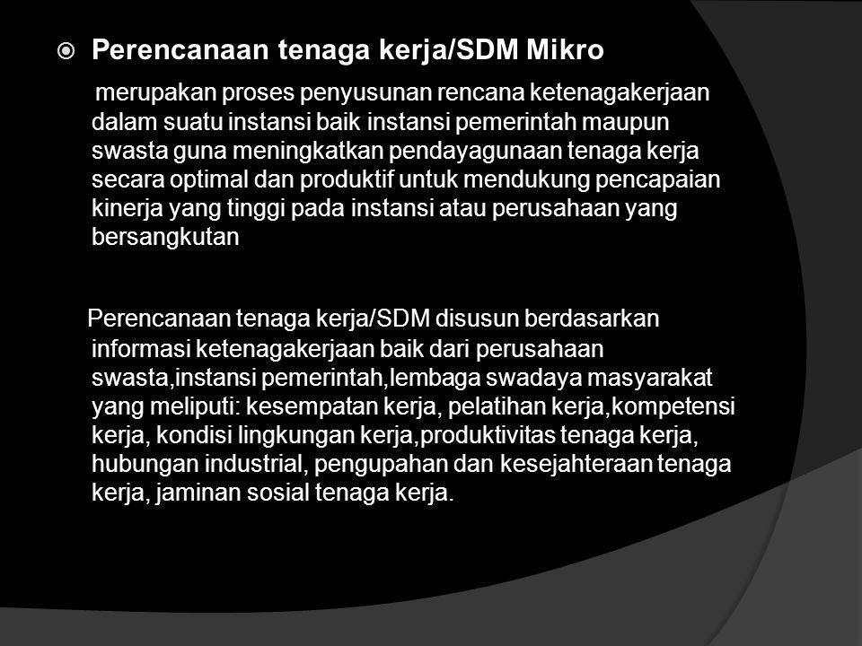  Perencanaan tenaga kerja/SDM Makro P edoman bagi pemerintah dalam menyusun kebijakan dibidang ketenagakerjaan.  Sebagai proses penyusunan rencana k