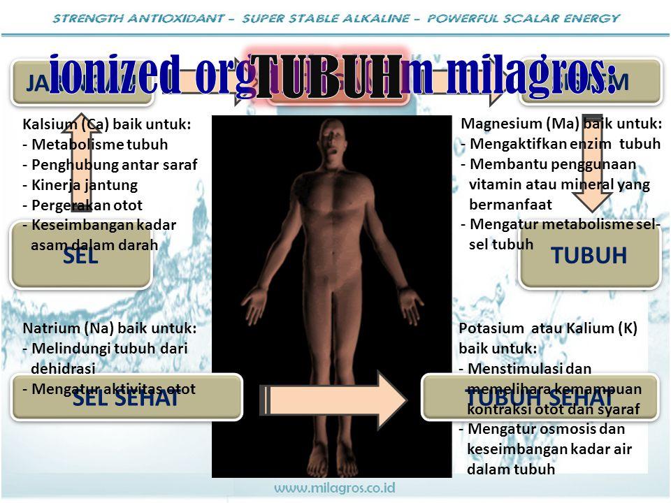 JARINGAN SISTEM SEL TUBUH SEL SEHAT TUBUH SEHAT ORGAN Kalsium (Ca) baik untuk: - Metabolisme tubuh - Penghubung antar saraf - Kinerja jantung - Perger