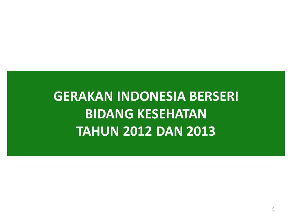 GERAKAN INDONESIA BERSERI BIDANG KESEHATAN TAHUN 2012 DAN 2013 9