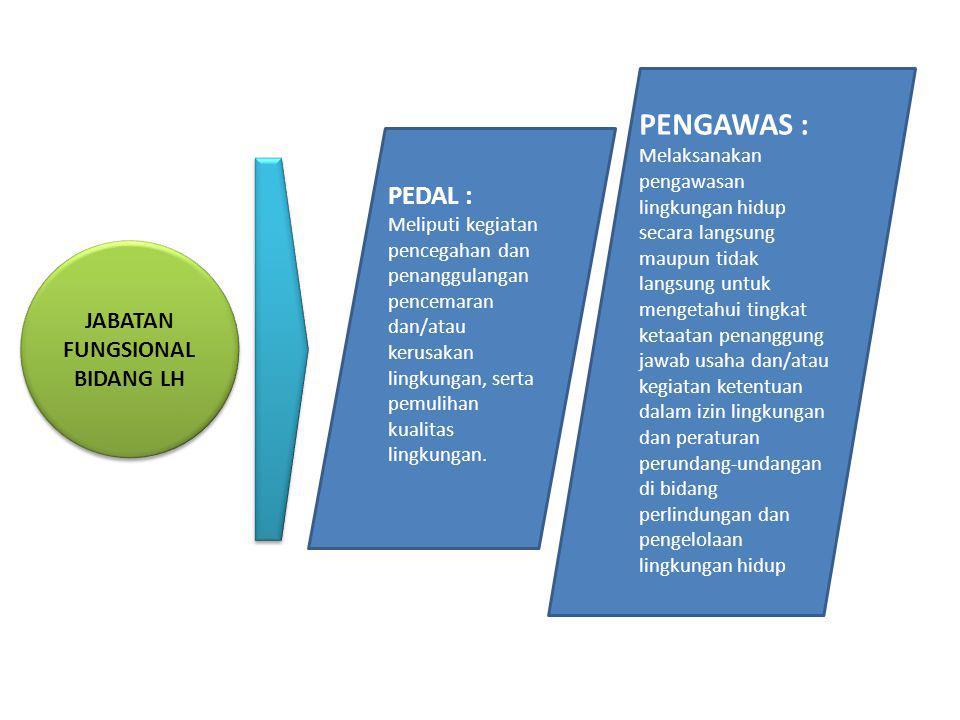 JABATAN FUNGSIONAL BIDANG LH PEDAL : Meliputi kegiatan pencegahan dan penanggulangan pencemaran dan/atau kerusakan lingkungan, serta pemulihan kualita