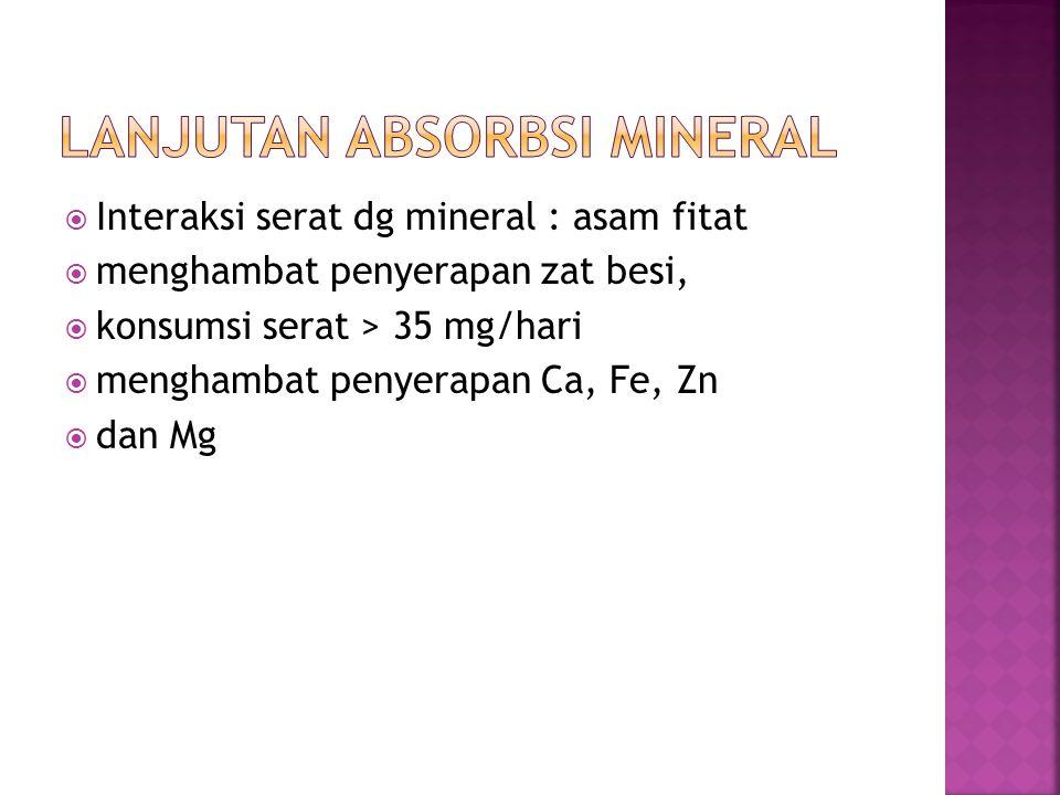  Interaksi serat dg mineral : asam fitat  menghambat penyerapan zat besi,  konsumsi serat > 35 mg/hari  menghambat penyerapan Ca, Fe, Zn  dan Mg