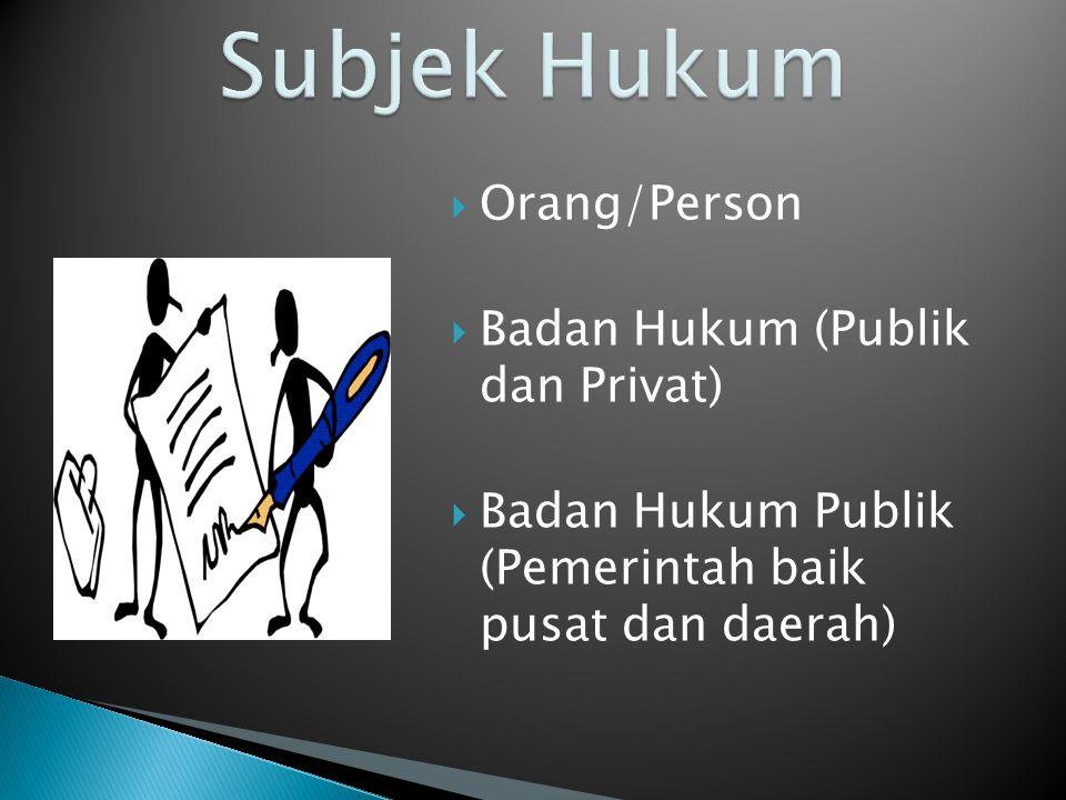  Orang/Person  Badan Hukum (Publik dan Privat)  Badan Hukum Publik (Pemerintah baik pusat dan daerah)