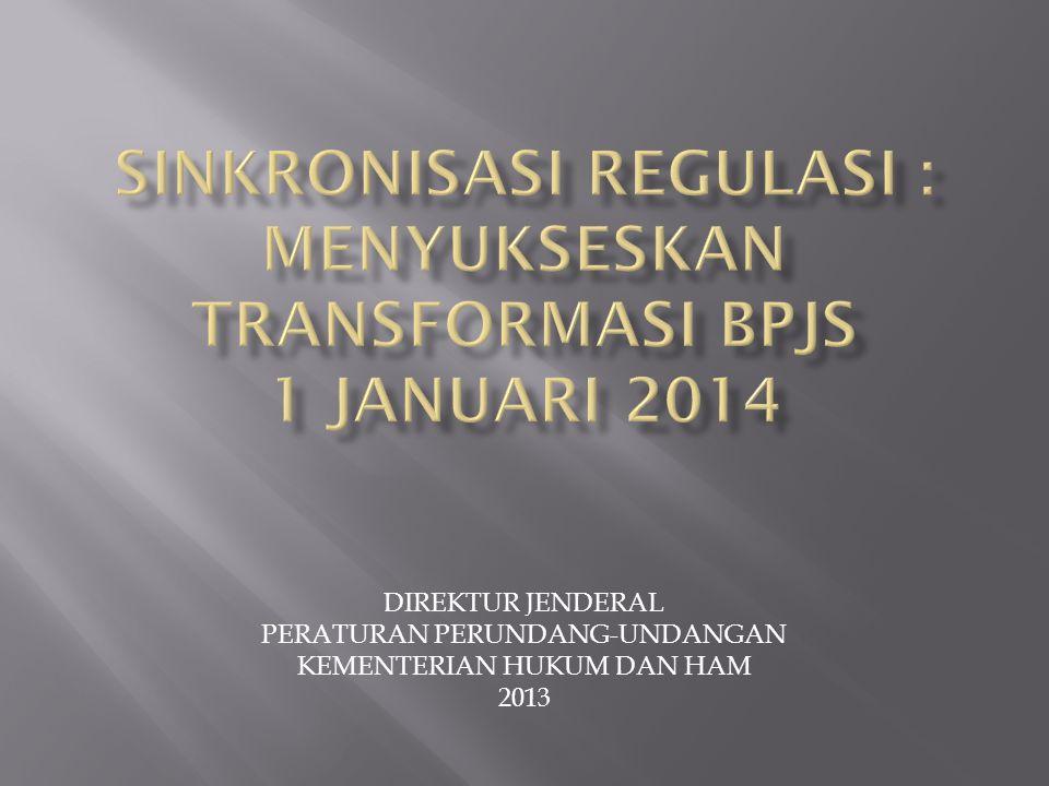 DIREKTUR JENDERAL PERATURAN PERUNDANG-UNDANGAN KEMENTERIAN HUKUM DAN HAM 2013