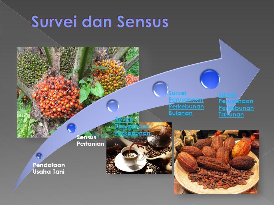 Pendataan Usaha Tani Sensus Pertanian Survei Perusahaan Perkebunan Tahunan Survei Perusahaan Perkebunan Bulanan Revisit Perusahaan Perkebunan