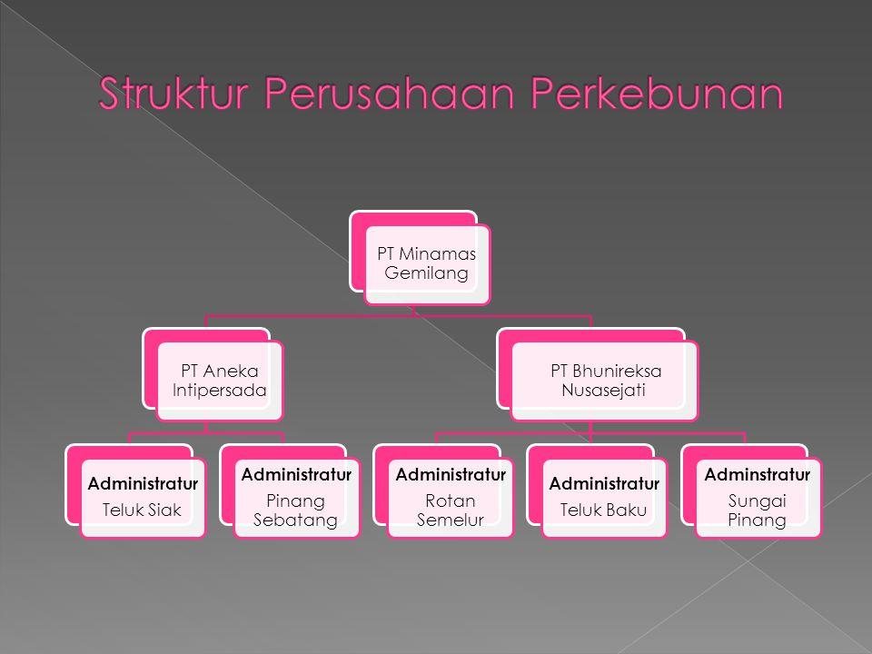PT Minamas Gemilang PT Aneka Intipersada Administratur Teluk Siak Administratur Pinang Sebatang PT Bhunireksa Nusasejati Administratur Rotan Semelur A
