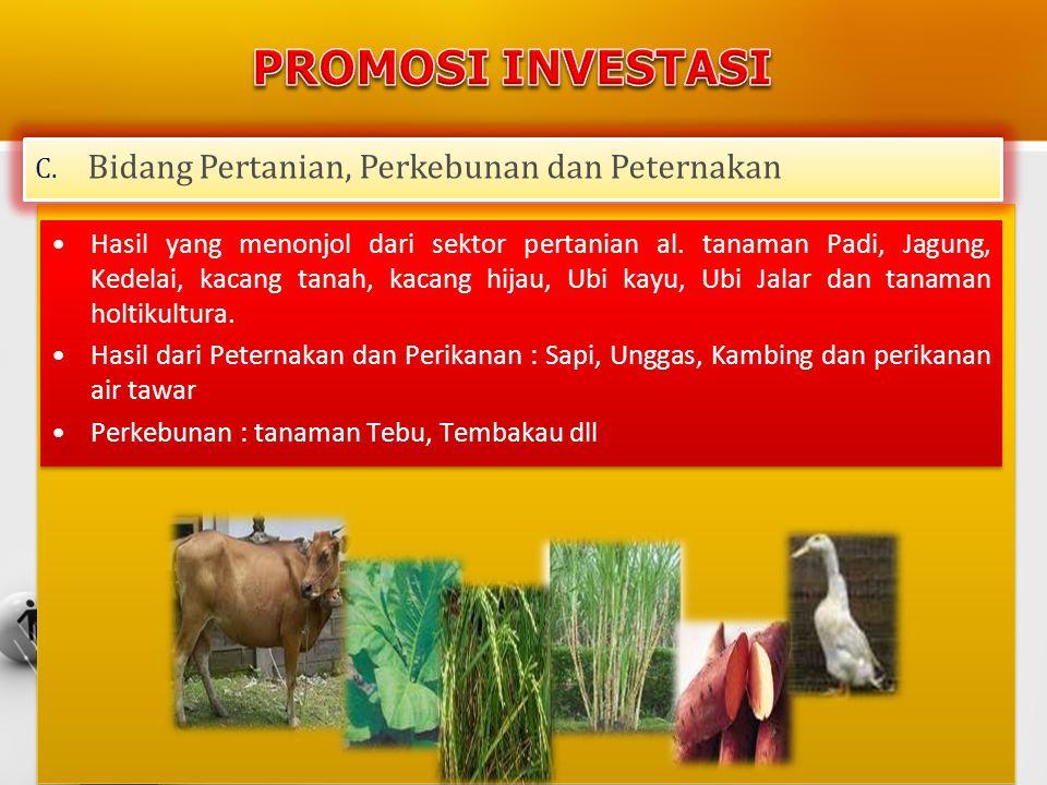 •Hasil yang menonjol dari sektor pertanian al. tanaman Padi, Jagung, Kedelai, kacang tanah, kacang hijau, Ubi kayu, Ubi Jalar dan tanaman holtikultura