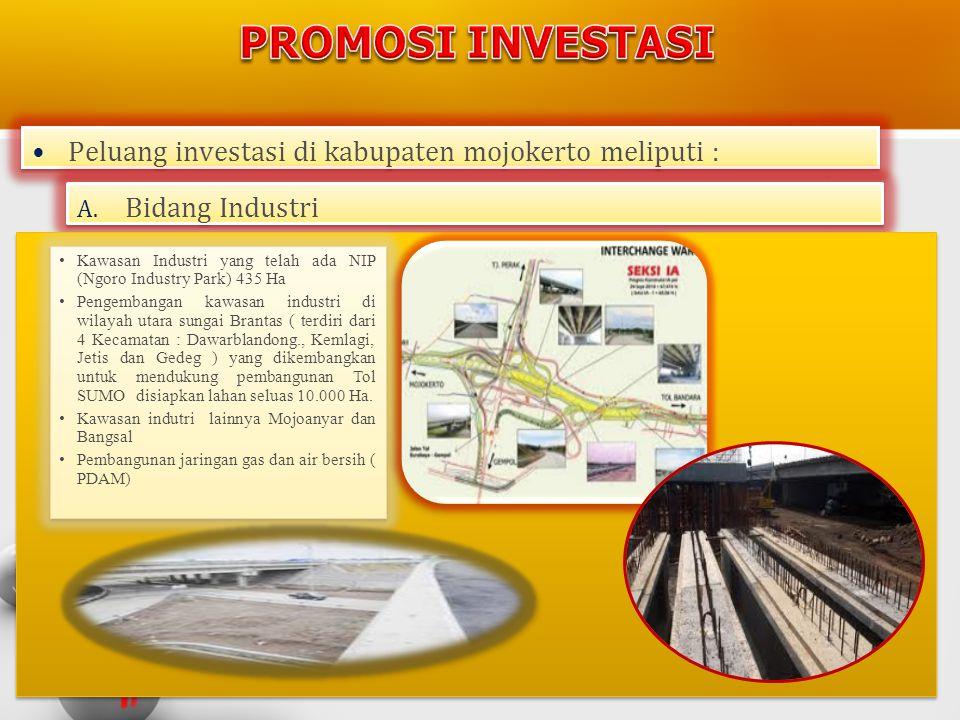 •Peluang investasi di kabupaten mojokerto meliputi : A. Bidang Industri Bidang Industri A. Bidang Industri Bidang Industri • Kawasan Industri yang tel