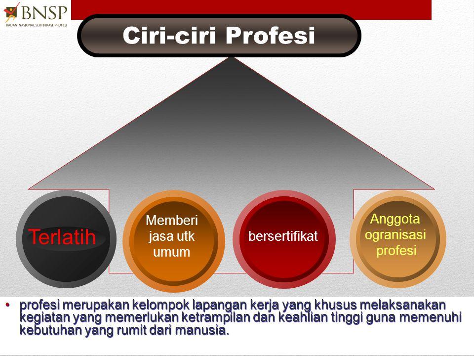ISU-ISU SERTIFIKASI • Profesi • Standar Kompetensi dan peta kompetensi • Sistem asesmen: formatif, sumatif, holistik • Skema sertifikasi: KKNI, Kualif