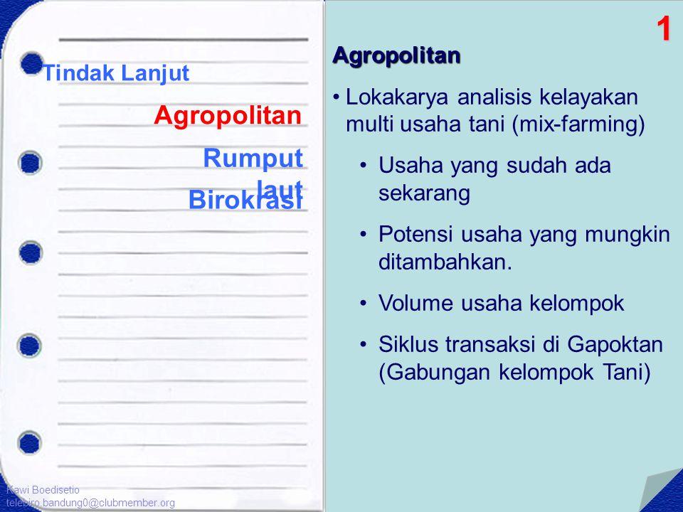Tindak Lanjut Agropolitan Birokrasi Agropolitan •Lokakarya analisis kelayakan multi usaha tani (mix-farming) •Usaha yang sudah ada sekarang •Potensi