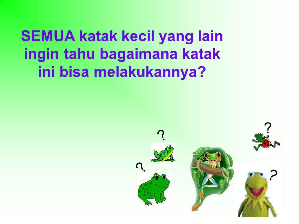 SEMUA katak kecil yang lain ingin tahu bagaimana katak ini bisa melakukannya? ? ? ? ?