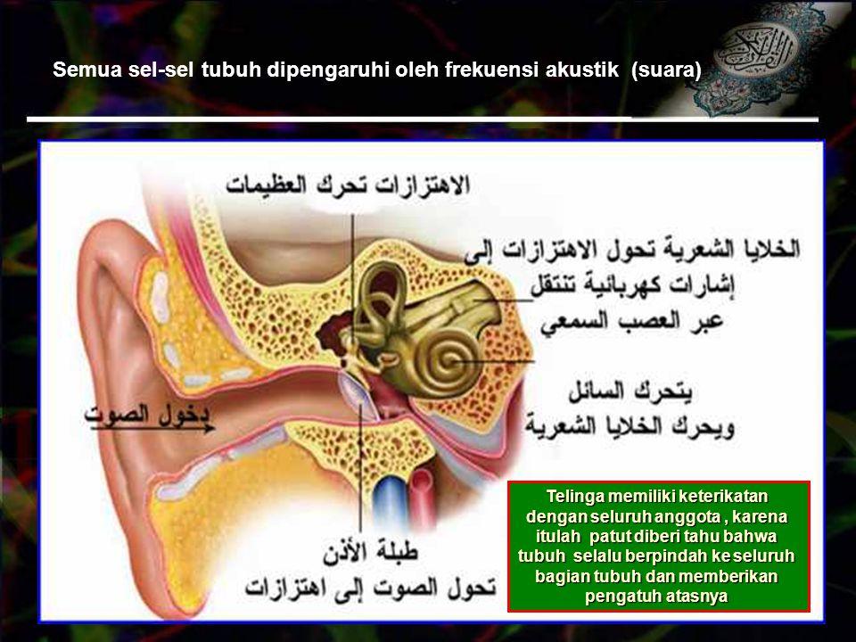 Semua sel-sel tubuh dipengaruhi oleh frekuensi akustik (suara) Telinga memiliki keterikatan dengan seluruh anggota, karena itulah patut diberi tahu bahwa tubuh selalu berpindah ke seluruh bagian tubuh dan memberikan pengatuh atasnya
