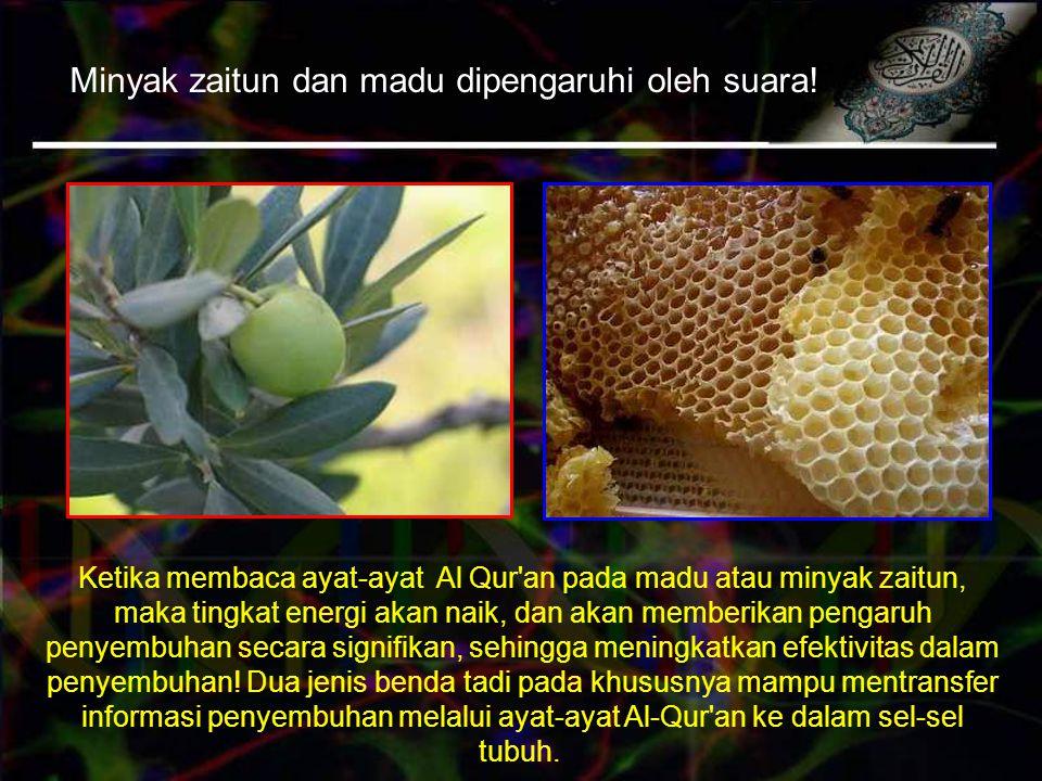 Minyak zaitun dan madu dipengaruhi oleh suara.