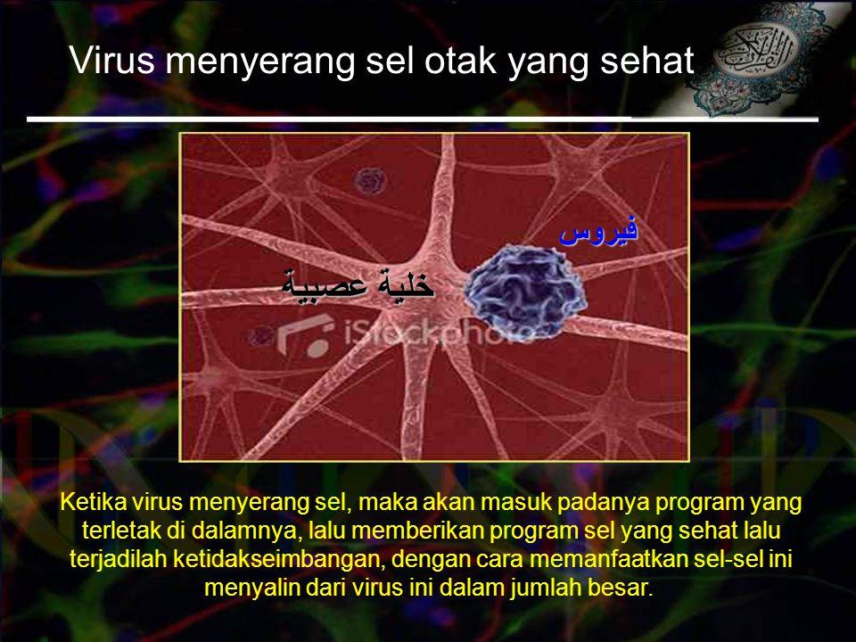 Virus menyerang sel otak yang sehat Ketika virus menyerang sel, maka akan masuk padanya program yang terletak di dalamnya, lalu memberikan program sel yang sehat lalu terjadilah ketidakseimbangan, dengan cara memanfaatkan sel-sel ini menyalin dari virus ini dalam jumlah besar.
