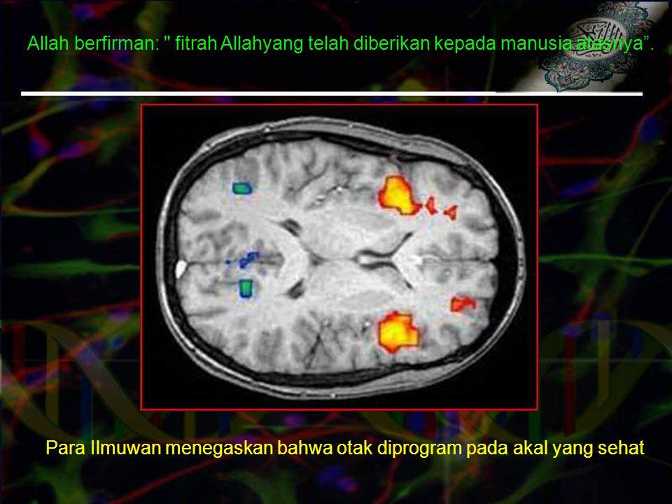 Para Ilmuwan menegaskan bahwa otak diprogram pada akal yang sehat Allah berfirman: fitrah Allahyang telah diberikan kepada manusia atasnya .