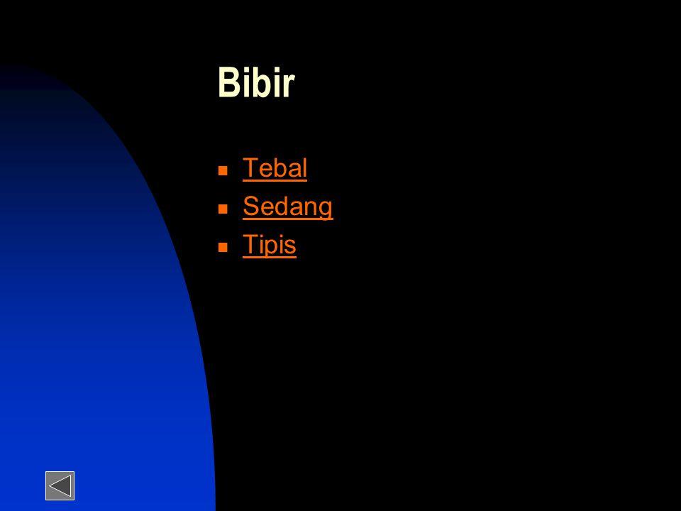 Bibir  Tebal Tebal  Sedang Sedang  Tipis Tipis
