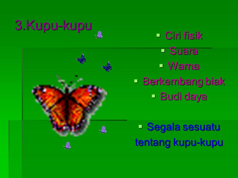3.Kupu-kupu  Ciri fisik  Suara  Warna  Berkembang biak  Budi daya  Segala sesuatu tentang kupu-kupu