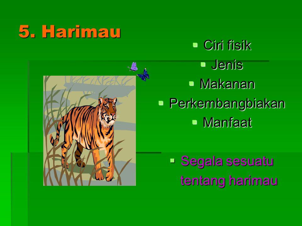 5. Harimau  Ciri fisik  Jenis  Makanan  Perkembangbiakan  Manfaat  Segala sesuatu tentang harimau tentang harimau