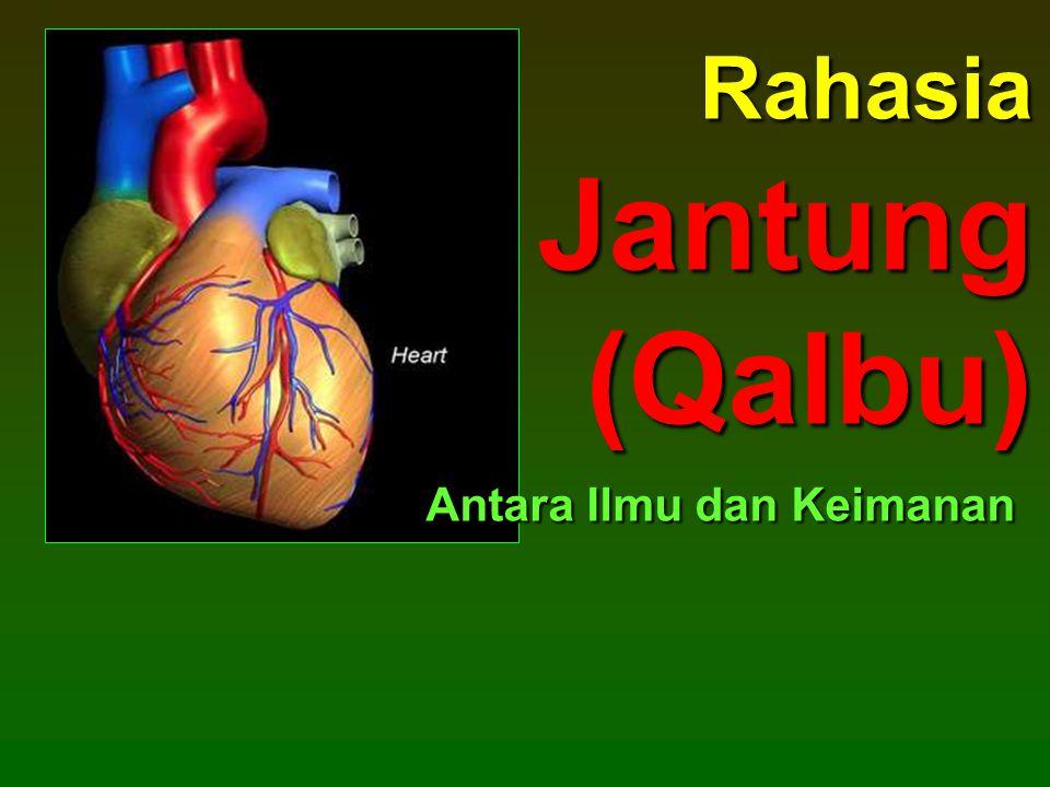 Rahasia Jantung (Qalbu) Antara Ilmu dan Keimanan