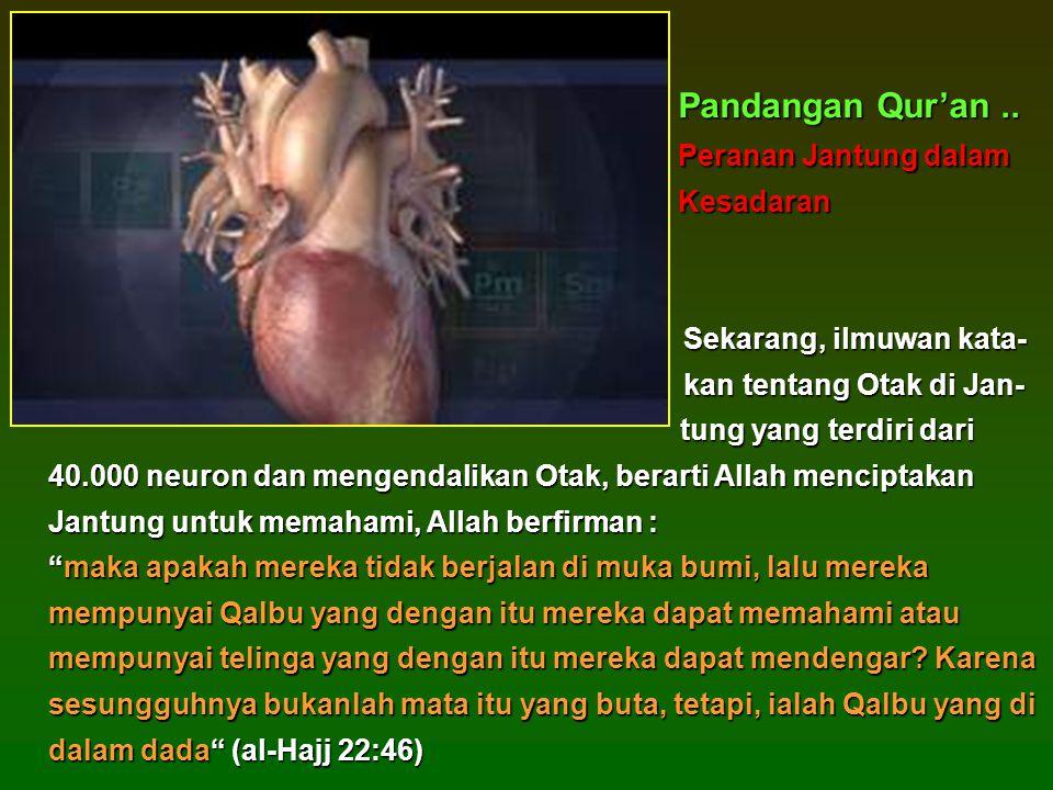 Sekarang, ilmuwan kata- Sekarang, ilmuwan kata- kan tentang Otak di Jan- tung yang terdiri dari kan tentang Otak di Jan- tung yang terdiri dari 40.000 neuron dan mengendalikan Otak, berarti Allah menciptakan Jantung untuk memahami, Allah berfirman : maka apakah mereka tidak berjalan di muka bumi, lalu mereka mempunyai Qalbu yang dengan itu mereka dapat memahami atau mempunyai telinga yang dengan itu mereka dapat mendengar.