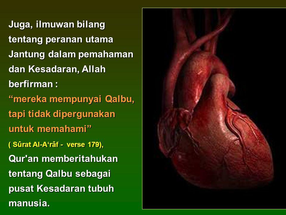 Juga, ilmuwan bilang tentang peranan utama Jantung dalam pemahaman dan Kesadaran, Allah berfirman : mereka mempunyai Qalbu, tapi tidak dipergunakan untuk memahami ( Sûrat Al-A'râf - verse 179), Qur an memberitahukan tentang Qalbu sebagai pusat Kesadaran tubuh manusia.