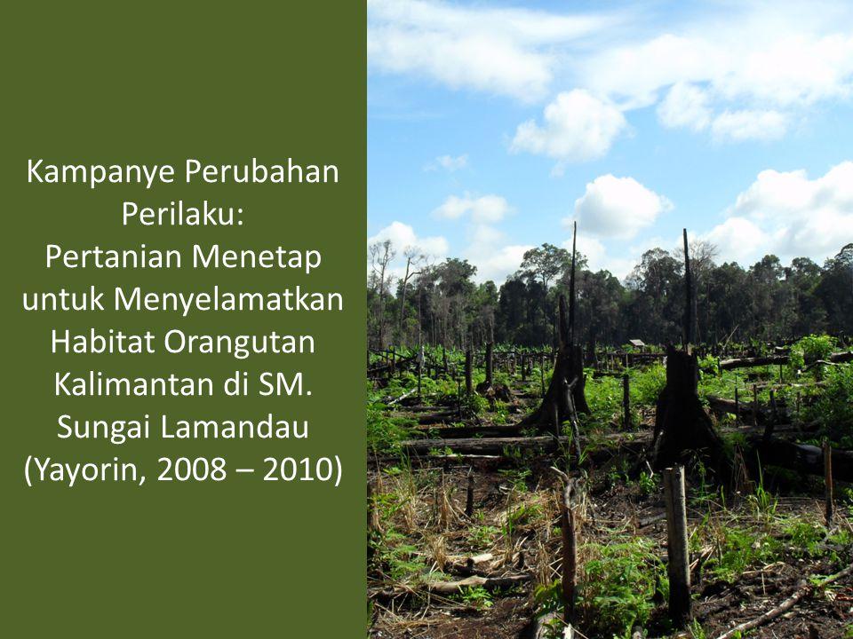 Kampanye Perubahan Perilaku: Pertanian Menetap untuk Menyelamatkan Habitat Orangutan Kalimantan di SM.