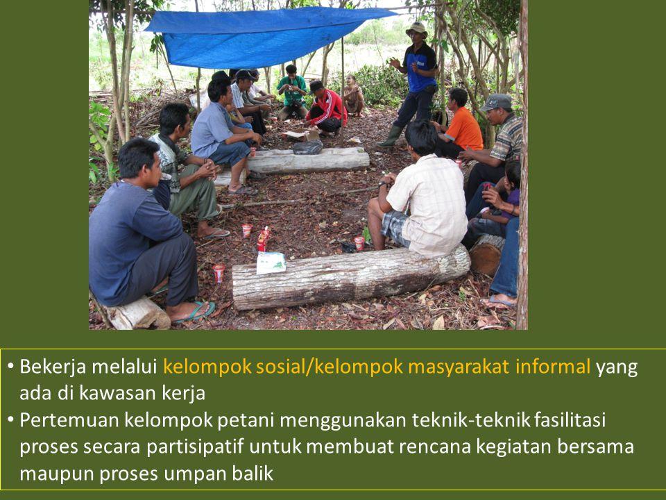 • Bekerja melalui kelompok sosial/kelompok masyarakat informal yang ada di kawasan kerja • Pertemuan kelompok petani menggunakan teknik-teknik fasilitasi proses secara partisipatif untuk membuat rencana kegiatan bersama maupun proses umpan balik