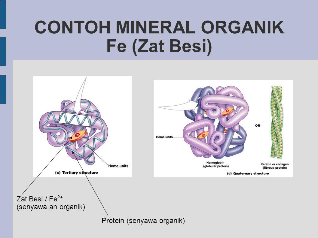 CONTOH MINERAL ORGANIK Fe (Zat Besi) Zat Besi / Fe 2+ (senyawa an organik) Protein (senyawa organik)