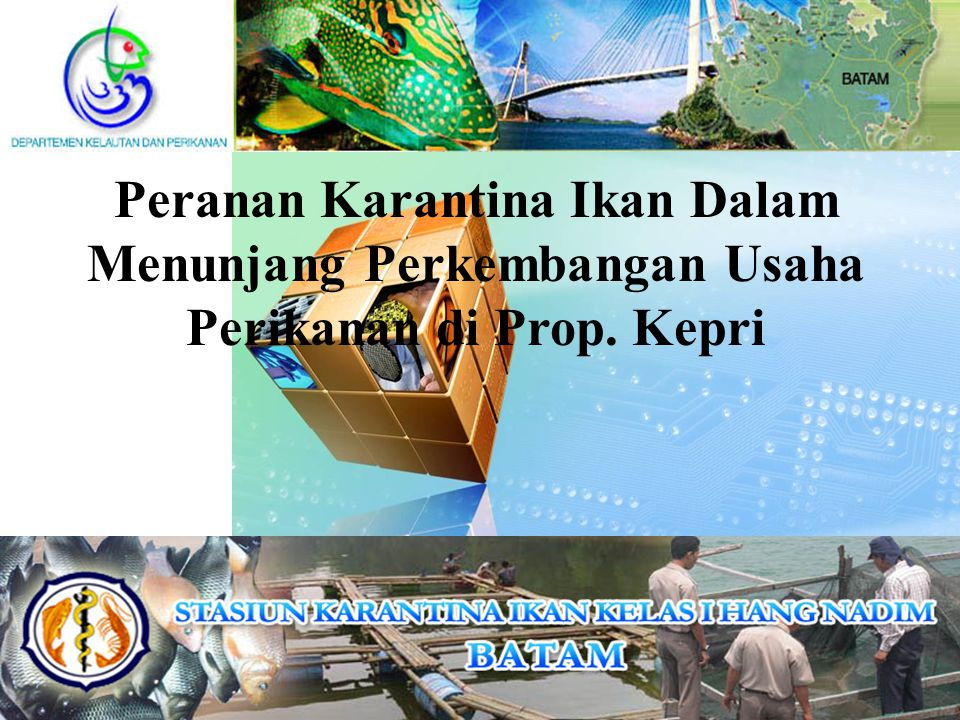 Kerugian ekonomi penyakit pada Udang  Wabah di China (1993): penurunan produksi 135,000  30,000 MT kerugian ekonomi US$ 1 milyar  Thailand (1995) US$ 500 juta  Indonesia:  80% tambak udang tidak operasional  kerugian US$ 300 juta/tahun  Estimasi global: 1 juta MT  produksi udang Indonesia selama 10 tahun