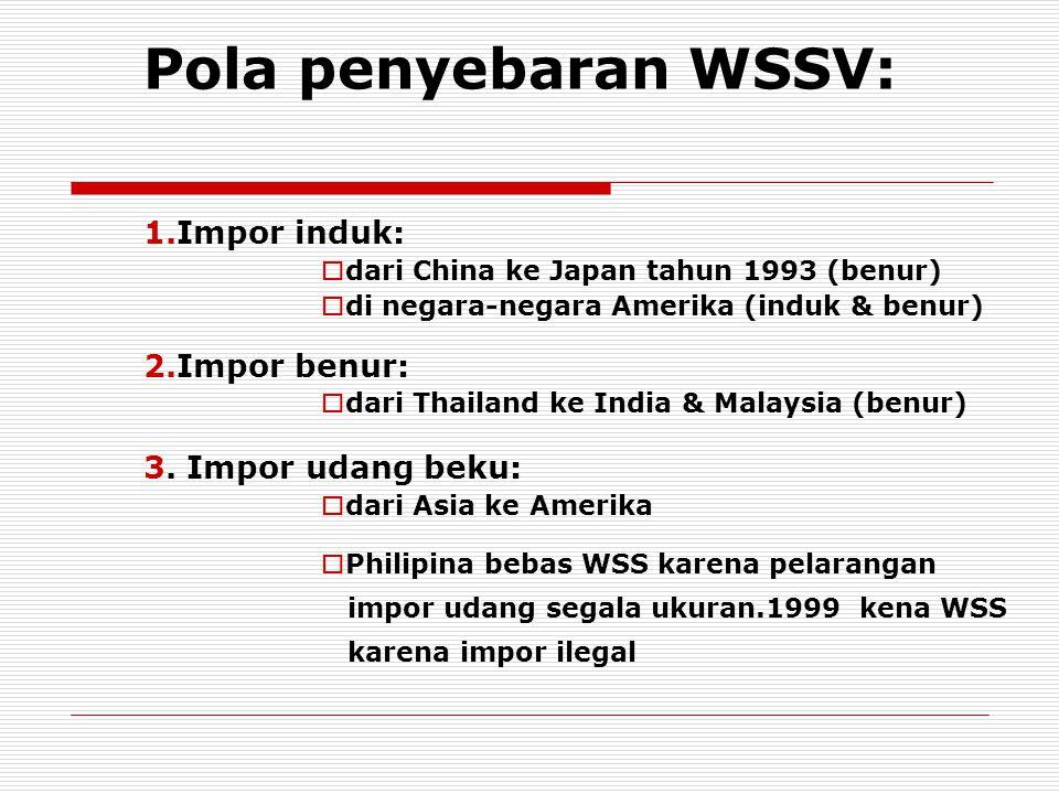 Pola penyebaran WSSV: 1.Impor induk:  dari China ke Japan tahun 1993 (benur)  di negara-negara Amerika (induk & benur) 2.Impor benur:  dari Thailan