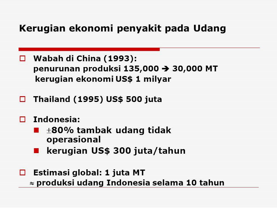 Kerugian ekonomi penyakit pada Udang  Wabah di China (1993): penurunan produksi 135,000  30,000 MT kerugian ekonomi US$ 1 milyar  Thailand (1995) U