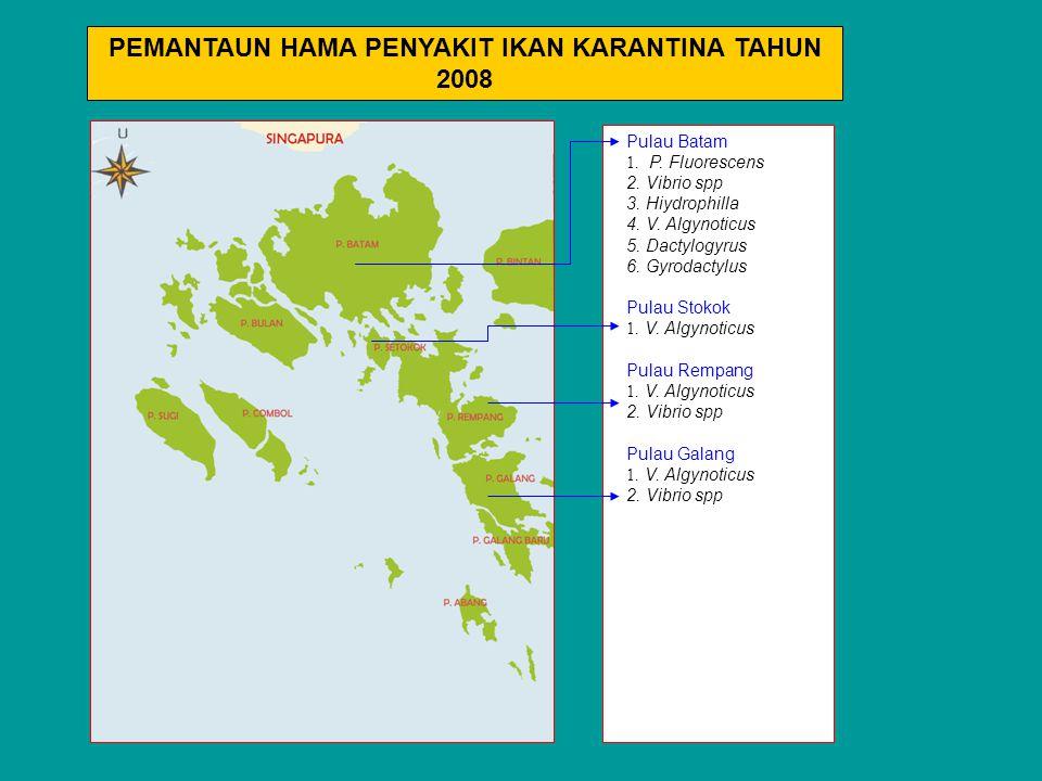 Pulau Batam 1. P. Fluorescens 2. Vibrio spp 3. Hiydrophilla 4. V. Algynoticus 5. Dactylogyrus 6. Gyrodactylus Pulau Stokok 1. V. Algynoticus Pulau Rem