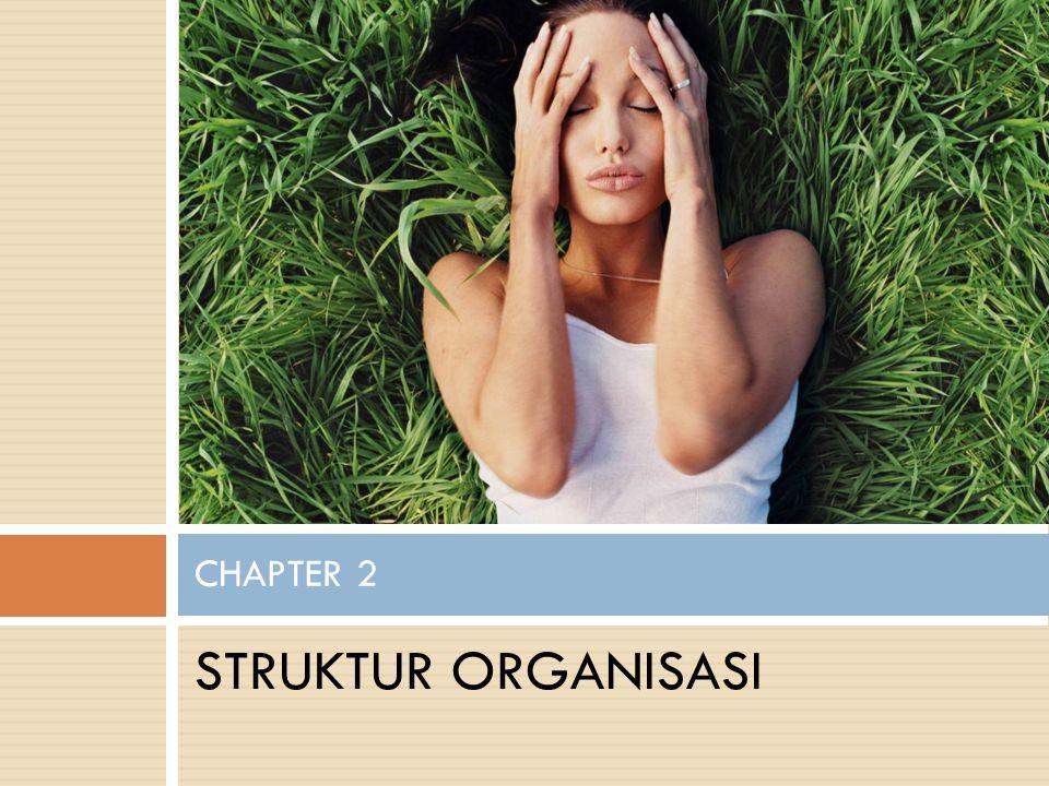STRUKTUR ORGANISASI CHAPTER 2