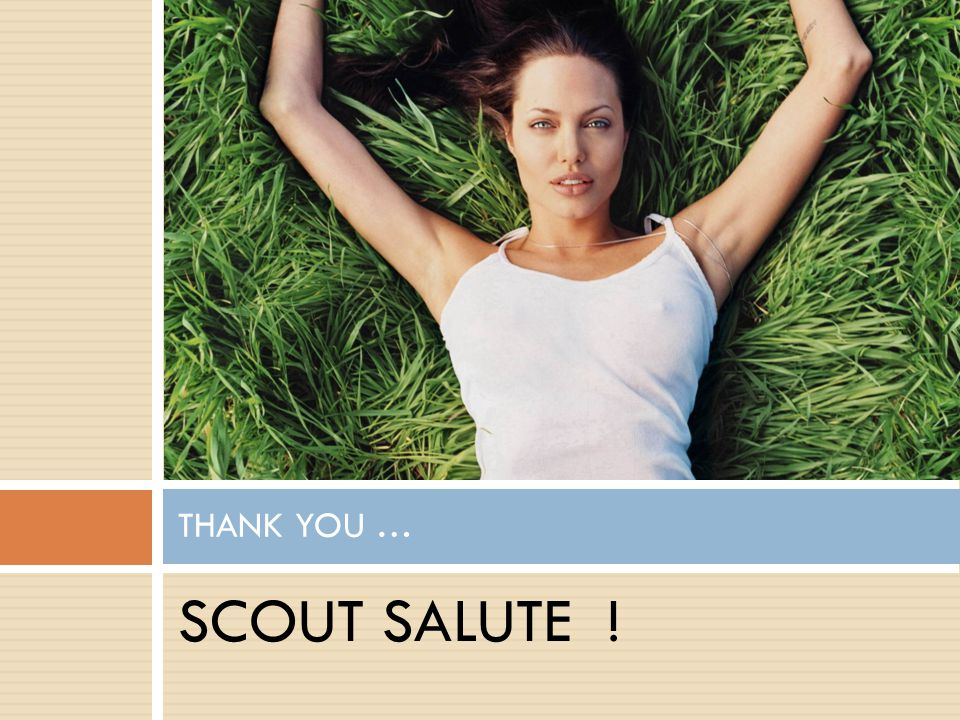 SCOUT SALUTE ! THANK YOU …