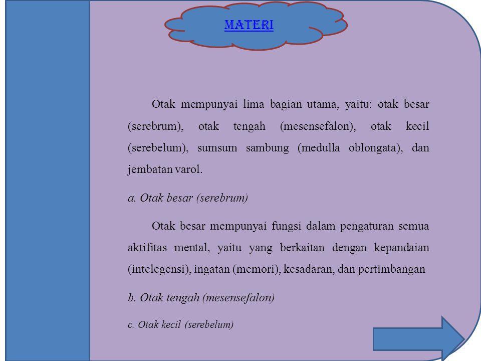 MATERI Otak mempunyai lima bagian utama, yaitu: otak besar (serebrum), otak tengah (mesensefalon), otak kecil (serebelum), sumsum sambung (medulla obl