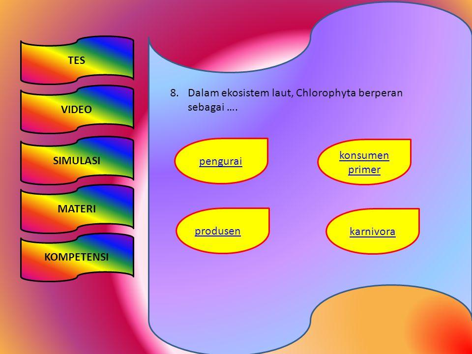 TES VIDEO SIMULASI KOMPETENSI MATERI 8.Dalam ekosistem laut, Chlorophyta berperan sebagai …. konsumen primer pengurai karnivora produsen