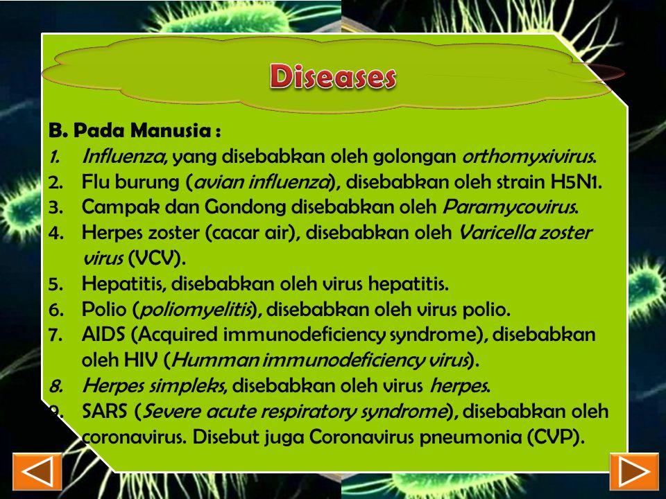 B. Pada Manusia : 1.Influenza, yang disebabkan oleh golongan orthomyxivirus. 2.Flu burung (avian influenza), disebabkan oleh strain H5N1. 3.Campak dan