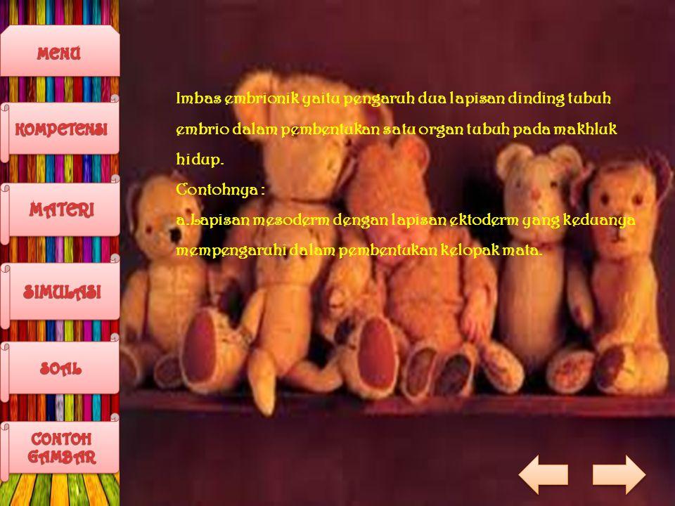 Imbas embrionik yaitu pengaruh dua lapisan dinding tubuh embrio dalam pembentukan satu organ tubuh pada makhluk hidup.