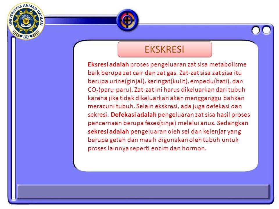 Eksresi adalah proses pengeluaran zat sisa metabolisme baik berupa zat cair dan zat gas.