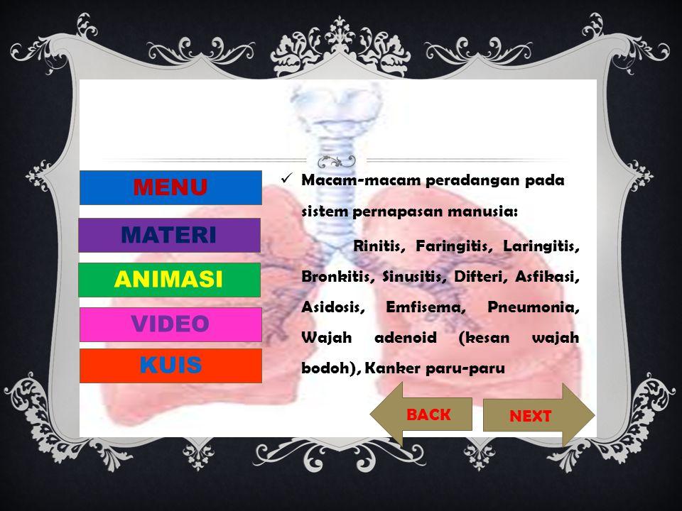  Macam-macam peradangan pada sistem pernapasan manusia: Rinitis, Faringitis, Laringitis, Bronkitis, Sinusitis, Difteri, Asfikasi, Asidosis, Emfisema,