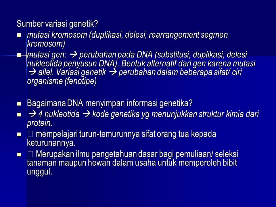 Sumber variasi genetik?  mutasi kromosom (duplikasi, delesi, rearrangement segmen kromosom)  mutasi gen:  perubahan pada DNA (substitusi, duplikasi