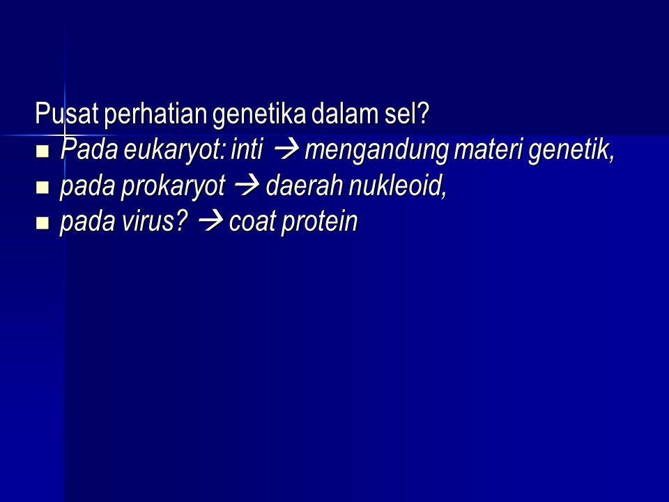 Pusat perhatian genetika dalam sel?  Pada eukaryot: inti  mengandung materi genetik,  pada prokaryot  daerah nukleoid,  pada virus?  coat protei
