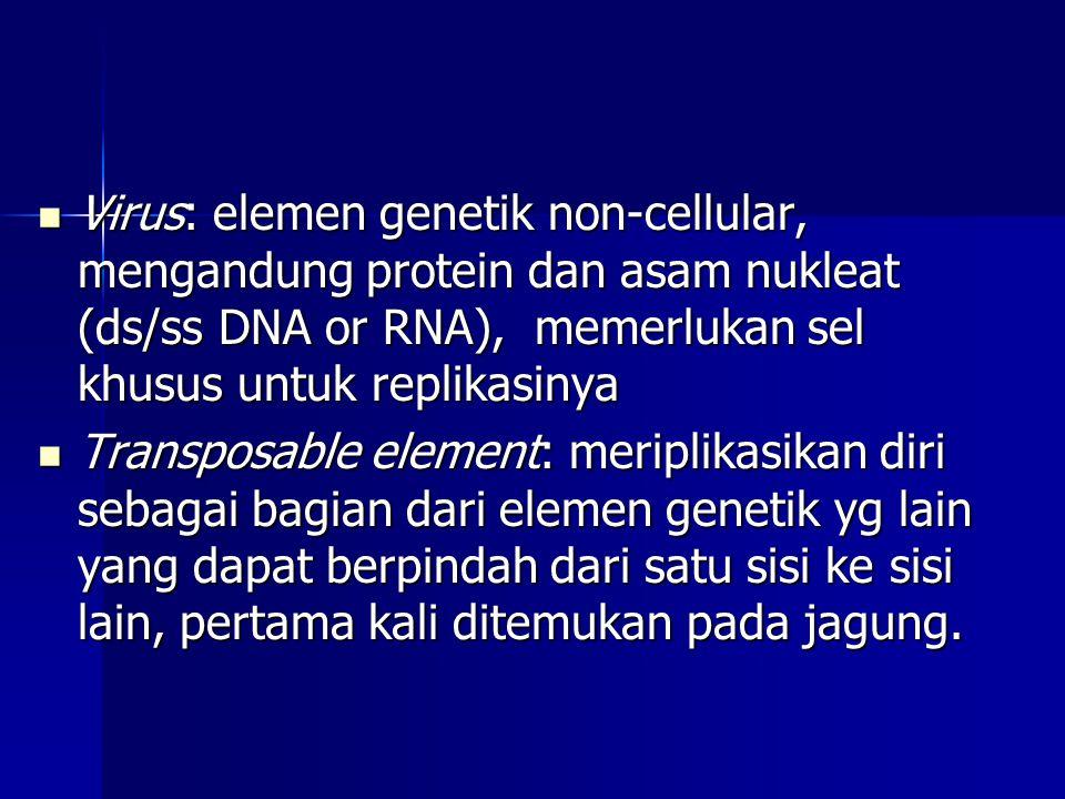  Virus: elemen genetik non-cellular, mengandung protein dan asam nukleat (ds/ss DNA or RNA), memerlukan sel khusus untuk replikasinya  Transposable