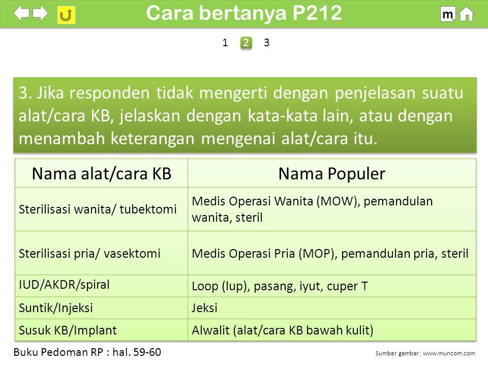100% SDKI 2012 Cara bertanya P212 m 3.