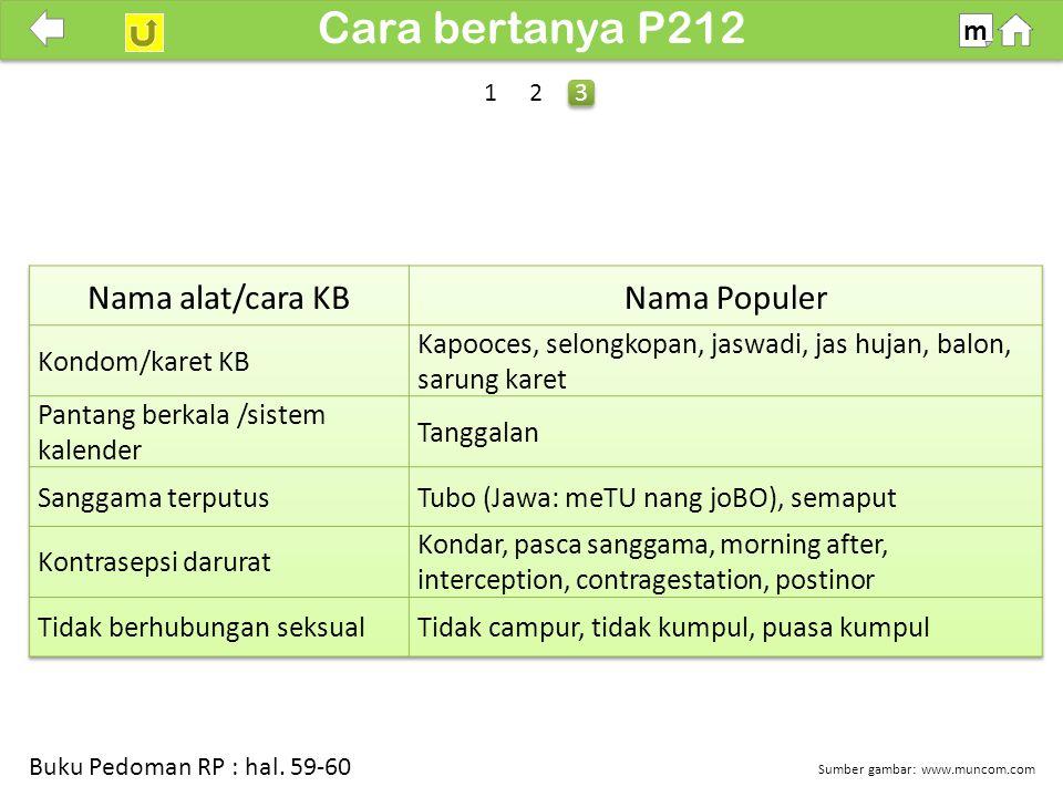 100% Cara bertanya P212 m Sumber gambar: www.muncom.com Buku Pedoman RP : hal. 59-60 3 3