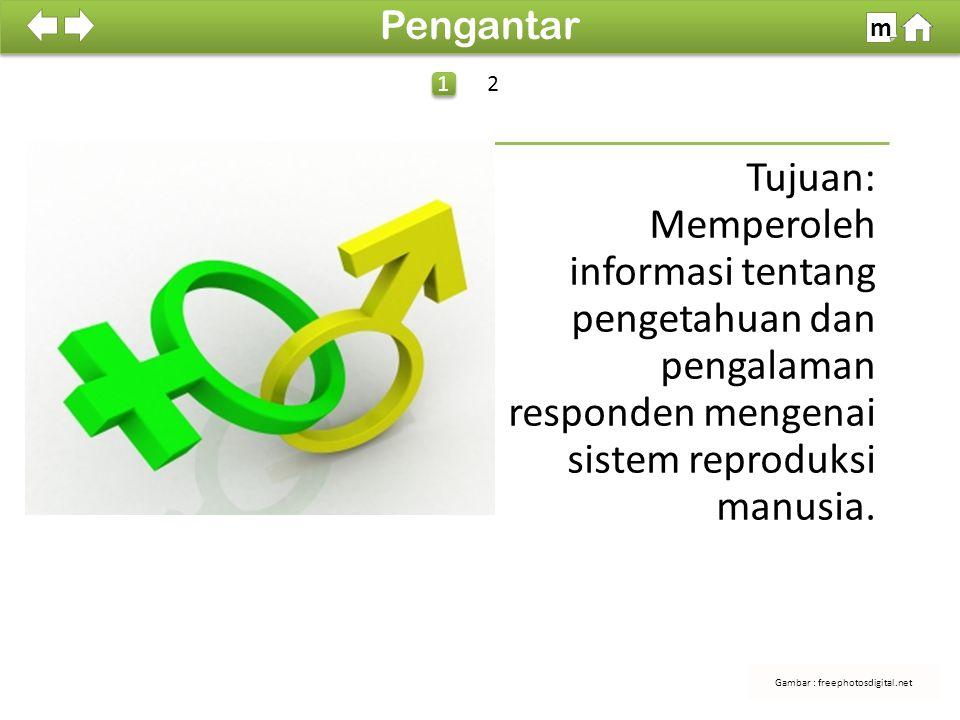100% SDKI 2012 Tujuan: Memperoleh informasi tentang pengetahuan dan pengalaman responden mengenai sistem reproduksi manusia.