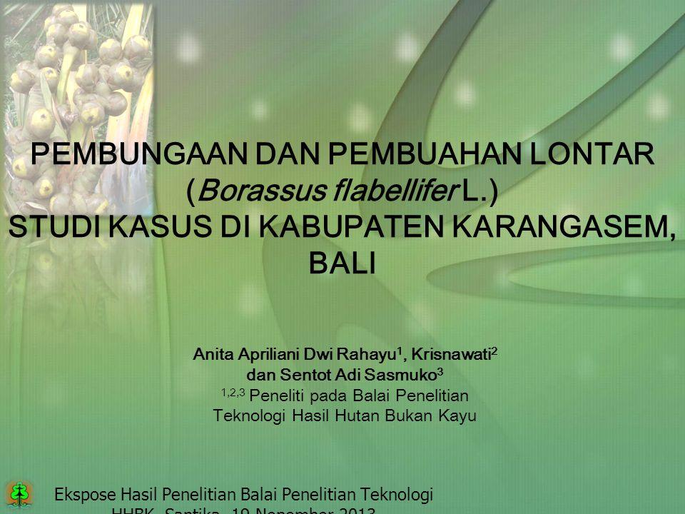 Ekspose Hasil Penelitian Balai Penelitian Teknologi HHBK, Santika, 19 Nopember 2013 PEMBUNGAAN DAN PEMBUAHAN LONTAR (Borassus flabellifer L.) STUDI KA