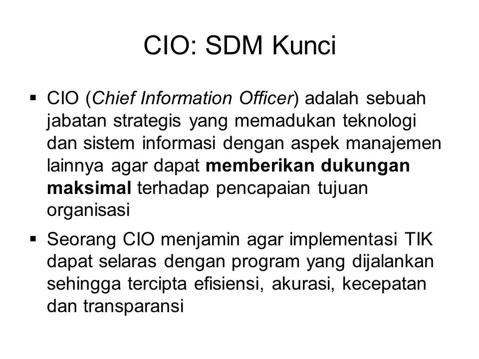CIO: SDM Kunci  CIO (Chief Information Officer) adalah sebuah jabatan strategis yang memadukan teknologi dan sistem informasi dengan aspek manajemen