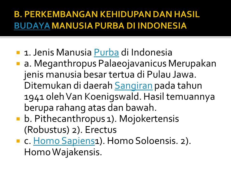  1.Jenis Manusia Purba di IndonesiaPurba  a.