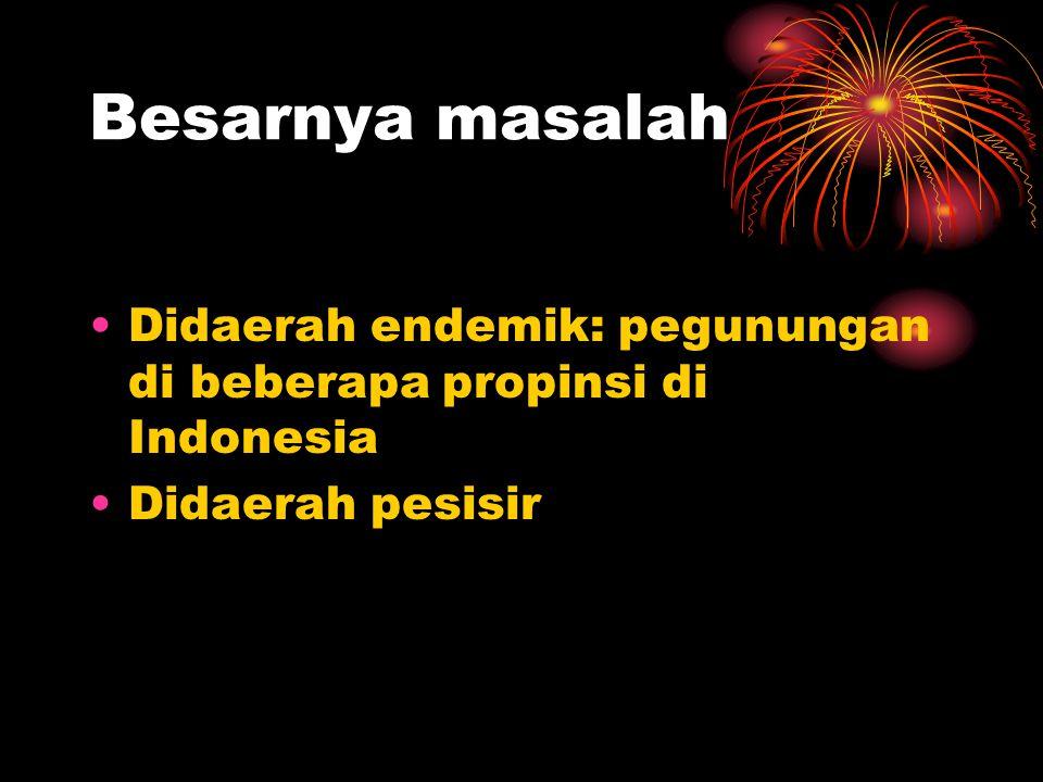 Besarnya masalah •Didaerah endemik: pegunungan di beberapa propinsi di Indonesia •Didaerah pesisir